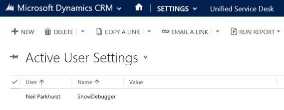 User Setting - Debugger